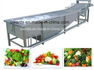 Service d'ODM OEM de lavage et séchage de la machine pour les Légumes et fruits