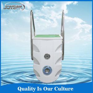 Berufshersteller Pipless integrativer Swimmingpool-Filter Pk8028