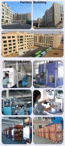 Fabricante China DC motorreductor