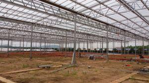Concluir grande filme Hydropnics Morango agricultura multifuncional das emissões