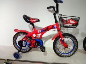 La ragazza bella dentellare va in bicicletta 12  16  20  bici dei capretti