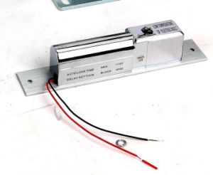 Serratura elettrica per il portello automatico