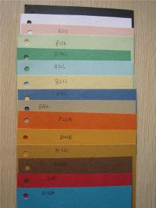Grãos de couro colorido Papel com relevo Board com grande qualidade
