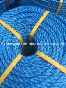 Pp.-Kombinations-Fischen-Seil