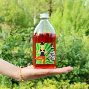 bottiglia di vetro della spremuta di nuovo disegno 520ml