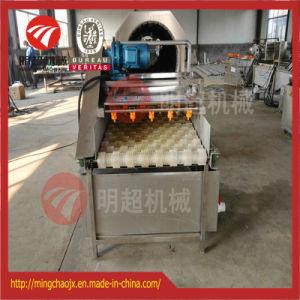 De Wasmachine van de Borstel van de raap/van de Wortel met de Nevel van de Hoge druk