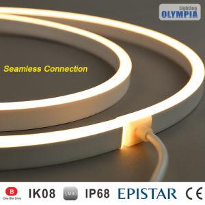 24V LED de luz da faixa de Neon Flexível