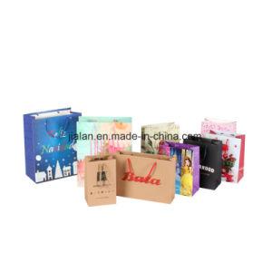 Het Winkelen van BSCI & van de Gift van Disney de Verpakkende Document Afgedrukte Zakken van de Gift van de Carrier