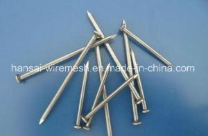 De Gemeenschappelijke Spijker van de Fabriek van China met Lage Prijs