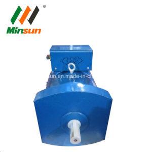Alternatore a tre fasi della dinamo del generatore della spazzola di St&Stc
