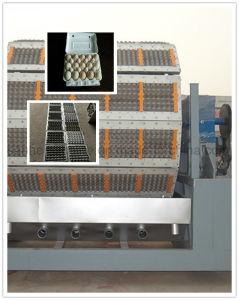 Máquina Automática fazendo bandejas de ovos de Celulose Tipo de processamento