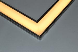 Indicatore luminoso di comitato vuoto 600*600mm alla moda del LED con Ce & approvazioni di RoHS