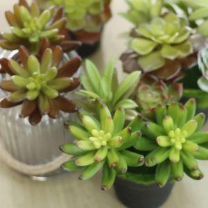Il Faux falso artificiale sintetico della decorazione domestica poco costosa pianta l'erba