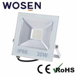 Aprobado por UL 30W IP65 al aire libre Jardín de luz LED