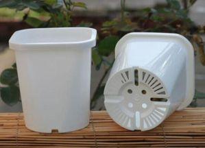 中国の高品質PP鍋および型の製造
