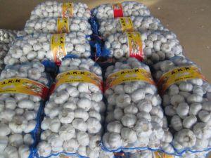 卸売のための2017新しい穀物の中国の安いニンニク
