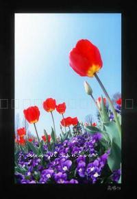 47 schermo dell'affissione a cristalli liquidi del visualizzatore digitale di pubblicità esterna di pollice
