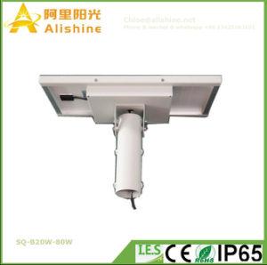 20W-80W Semi-Sepratedの太陽電池パネル調節可能な統合されたLEDの街灯ライト