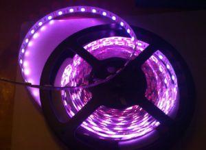 RGB LED SMD5050-60colorido de la luz de banda