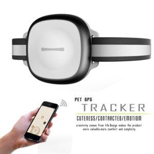 Пэт GPS Tracker Пэт мини-Locator GSM GPS водонепроницаемый WiFi GPS местоположения Lbs светодиодный индикатор мигает в ночное время для кошек собак