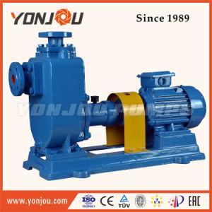 Moteur de pompe à eau Yonjou