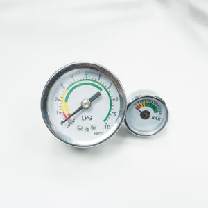Manometro della gomma di migliore vendita della CX-Mini-Pagina mini (CX-MINI-PG)