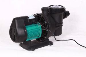 高品質のプール水エンジンポンプ