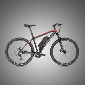 O OEM China Factory 350W 29er Biciletta bicicletas eléctricas do motor sem escovas
