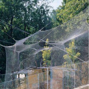 Venda a quente de malha de arame de aço inoxidável Bird pano de malha de corda de pontos nodados