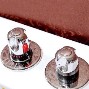 Bañera de hidromasaje de esquina del rectángulo (TLP-659 mando neumático)