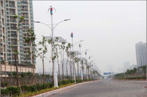 200W le vent solaire Système d'éclairage de rue hybride (VAWT 200W-10KW)
