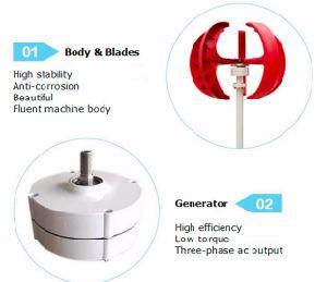 turbine verticale de générateur de vent 300W pour la maison