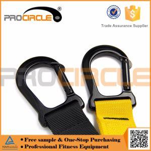 La fuerza de la suspensión Procircle Trainer ejercicio correa
