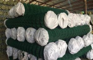 Revêtement poudré en PVC le maillon de chaîne Grillage de clôture de piscine