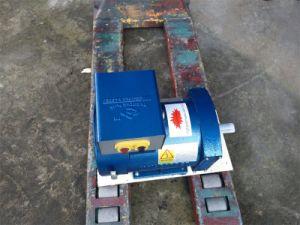 De Enige Fase van de Lage Prijs van de Kwaliteit van Hight, het Voltage van de Optie: 110V/220V Alternator