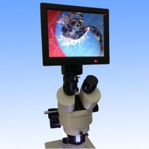 Microscopio estéreo cámara digital con 8'TFT-Pantalla de LED DM001