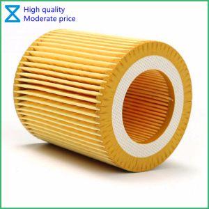 Fabbrica di alta qualità OEM/ODM della Cina che fornisce il filtro dell'olio per BMW