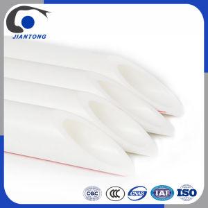 Fabriqué en plastique standard pour l'eau du tuyau de PPR avec du blanc d'alimentation