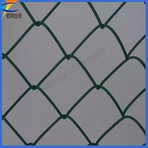 Enduit de PVC Maillon de chaîne de treillis métallique soudé