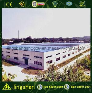 Мастерская стальной структуры с аттестацией CE (LS-S-074)