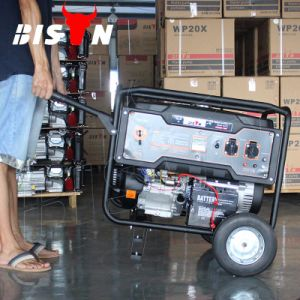 Des Bison-(China) BS4500m (H) 3kw 3000W kupfernen des Draht-177f Generator-Kraftstoffverbrauch Motor-beweglicher des Benzin-3kVA
