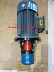 Pompa a ingranaggi e motore elettrici dell'unità Wbz-25