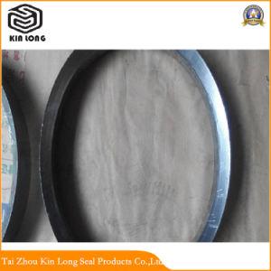 水に、オイル媒体使用する、適用範囲が広いグラファイトのパッキングリング静的なシールのAnti-Corrosionシールのための弁、