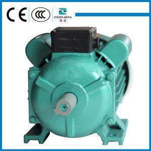 Série YL motor elétrico de indução Monofásico com capacitor de partida executando o capacitor