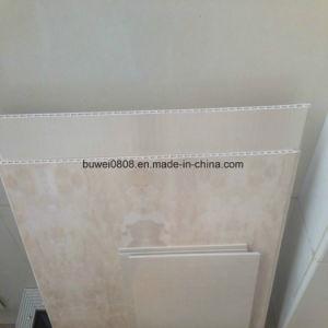 Commissie van de Muur van de fabriek de Directe Waterdichte Houten Plastic Samengestelde