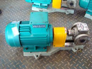 Ycb50 le pignon de pompe à carburant circulaire
