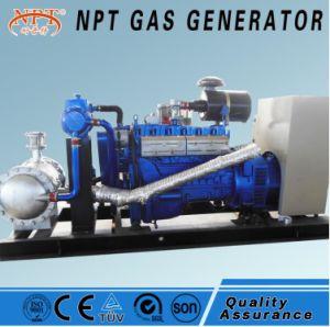 Ce aprobada 80kw generador de biogás Natural