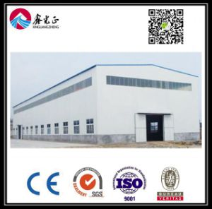 Magazzino personalizzato alta qualità della struttura d'acciaio (BYSS005)