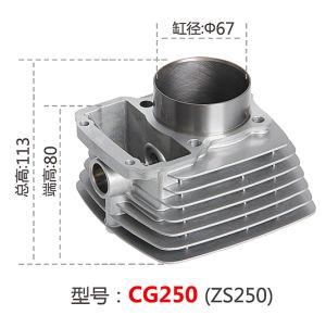 Bloco de motocicleta CG250, Zs250