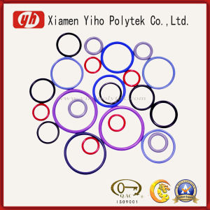Fluorocarbon ISO9001 RoHS RubberO-ring